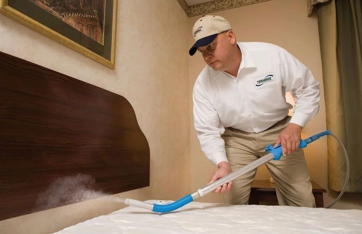 Sprays And Other Treatments To Kill And Get Rid Of Bed Bugs